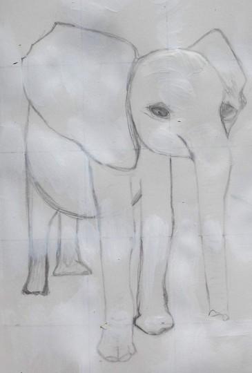 elephant.1
